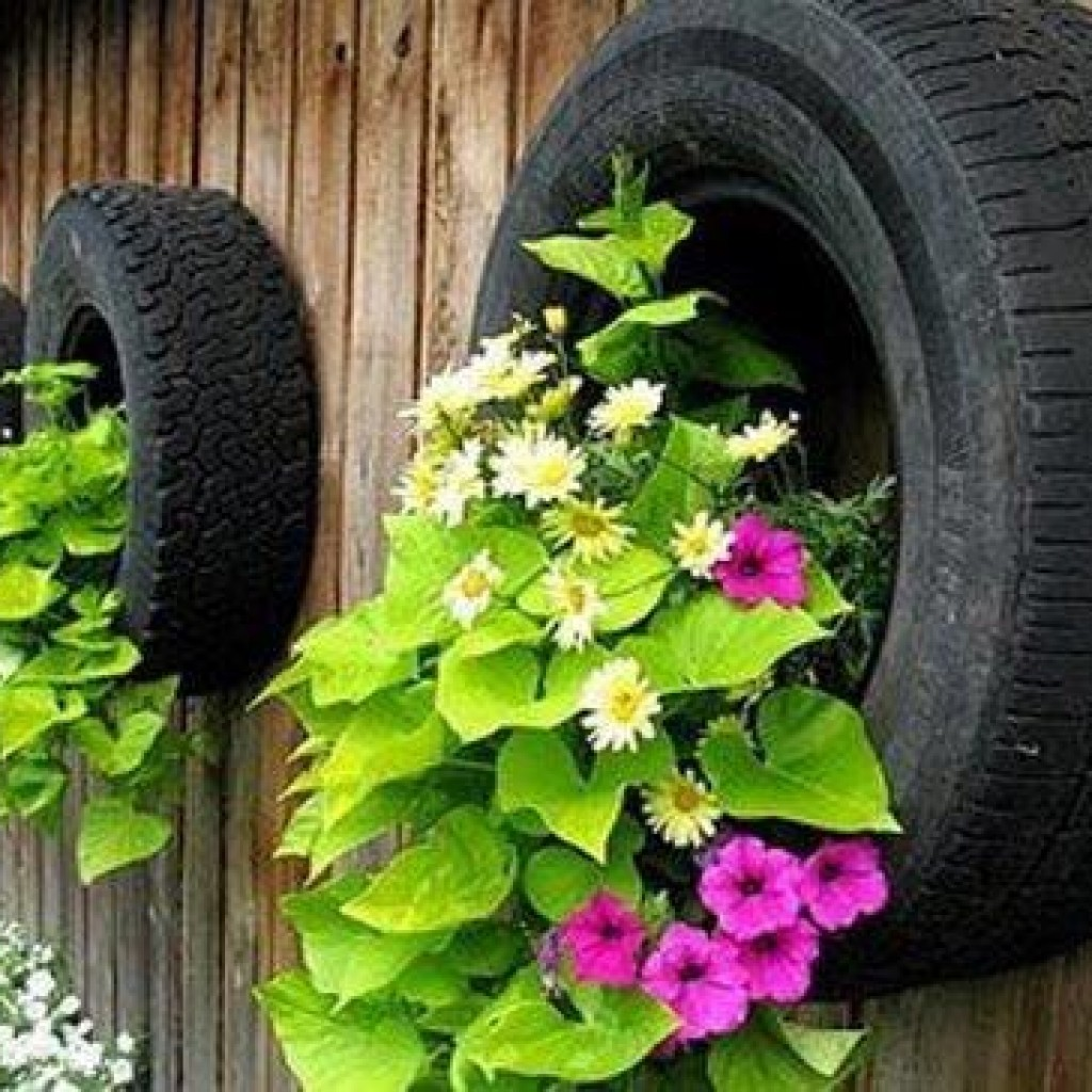 Сажаем цветы в шины 744